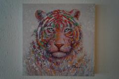 Bild Tiger (40x40 cm) - Art.-Nr. 5
