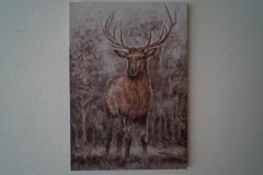 Bild Hirsch Wald (70x100 cm) - Art.-Nr. 10